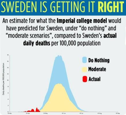 sweden, herd immunity, covid-19 hoax